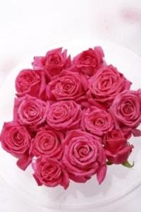 rosarosenstrauss